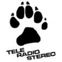 TeleRadioStereo